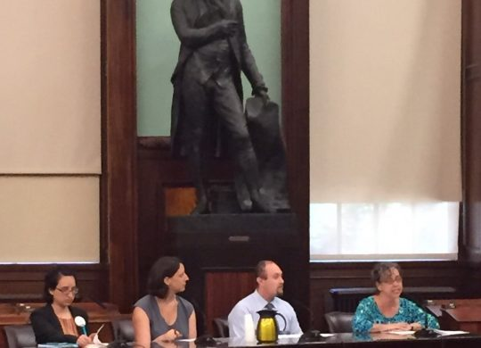 Lenni Benson, Professor of Law and Executive Director of Safe Passage Project, testifies in front of New York City Council