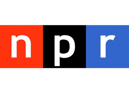 NPR Features Safe Passage Founder Lenni Benson